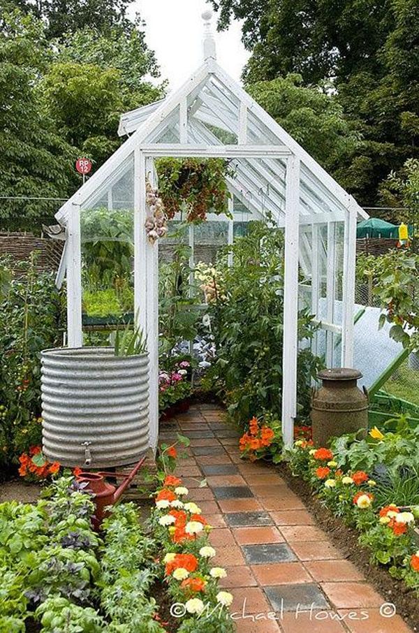 minimalist-greenhouse-for-backyard