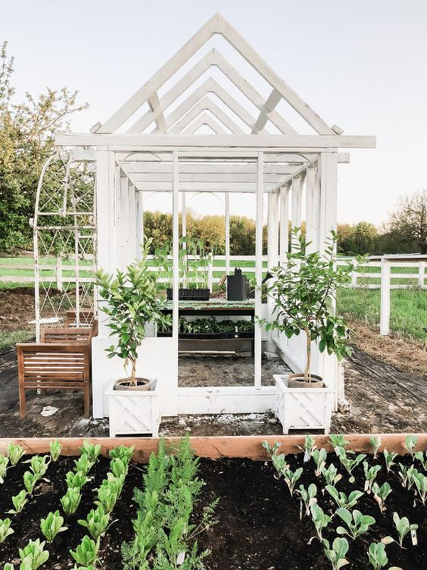 small-greenhouse-ideas-with-garden-shed