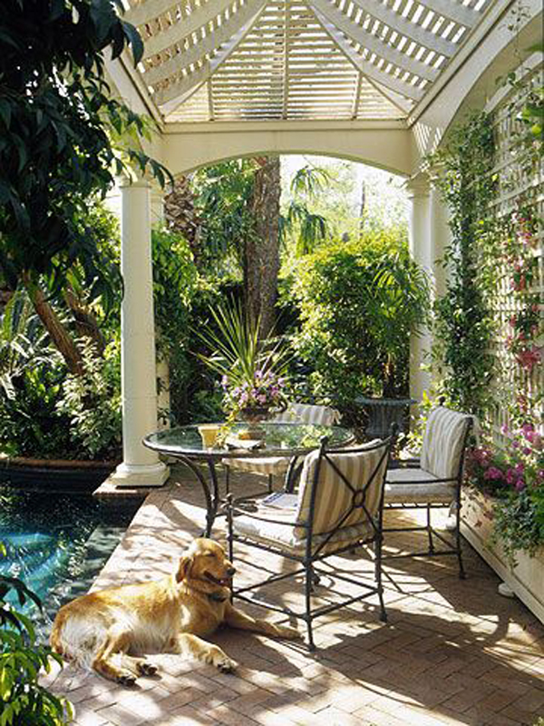 amazing-backyard-pool-and-spa-with-dog-retreat