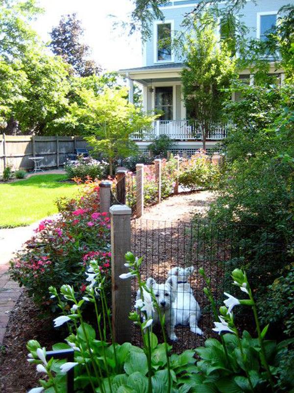 backyard-dog-play-area-and-retreat
