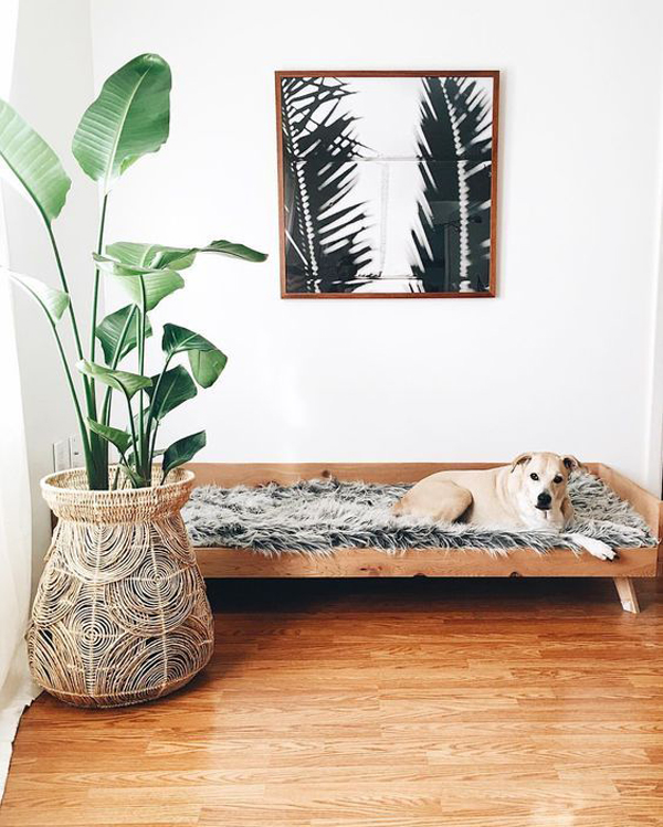 boho-chic-dog-bed-designs