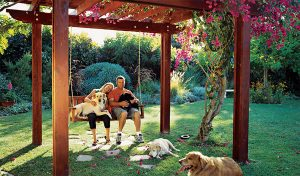cozy-backyard-dog-retreat-with-pergolas