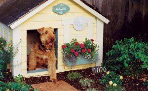 cozy-dog-house-ideas-in-the-backyard