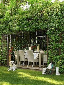 fresh-and-nature-outdoor-space-with-dog-retreat-in-the-grass