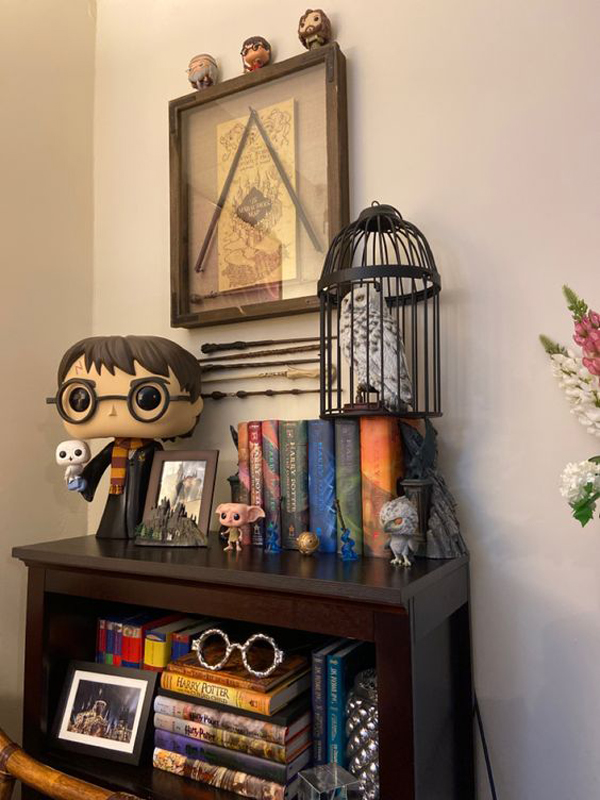 harry-potter-shelf-cabinet