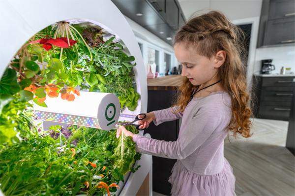 indoor-ogarden-smart-gardening