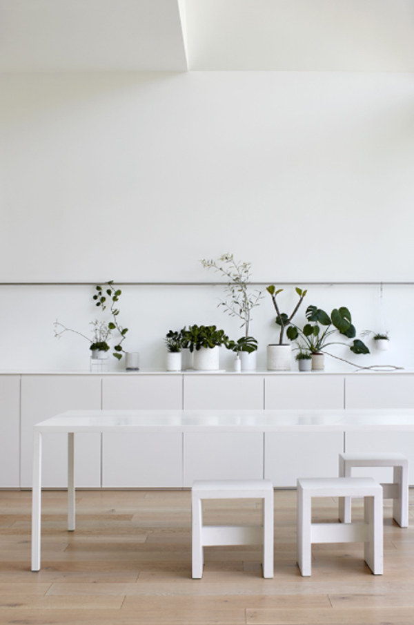 minimalist-dining-room-with-houeplant-display