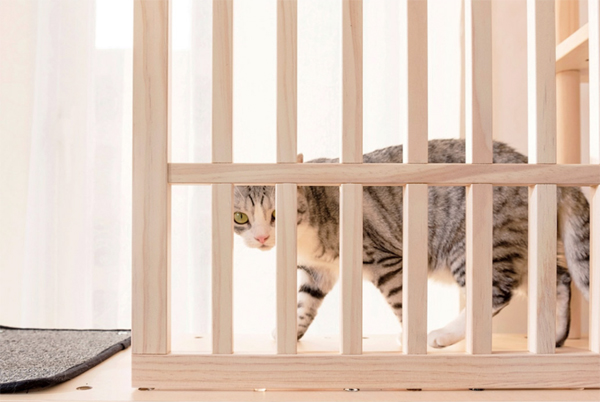 minimalist-wooden-cat-tree-design
