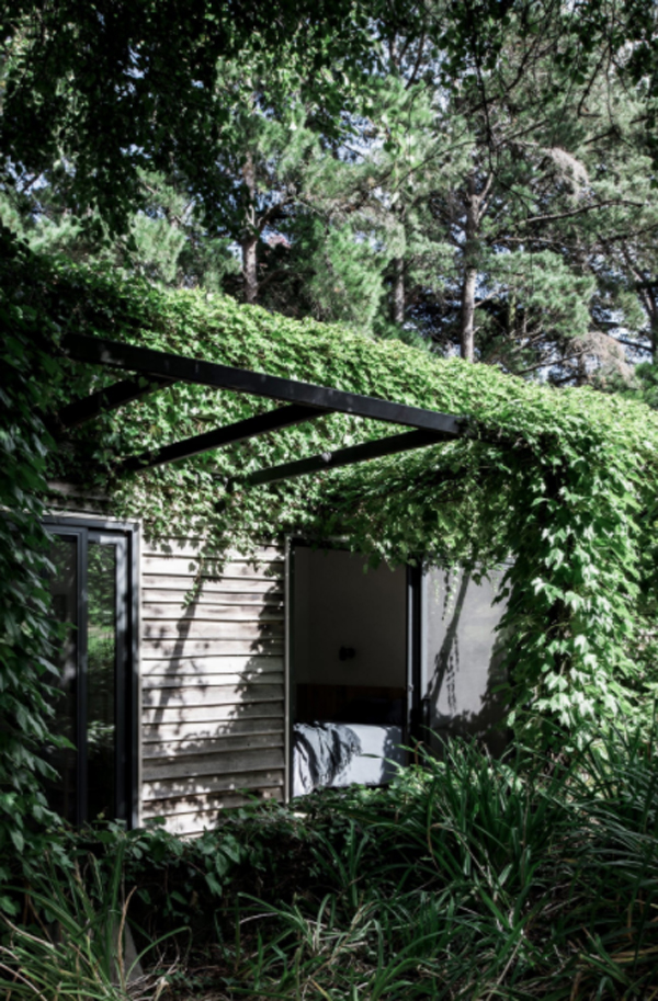 nature-inspired-guest-house