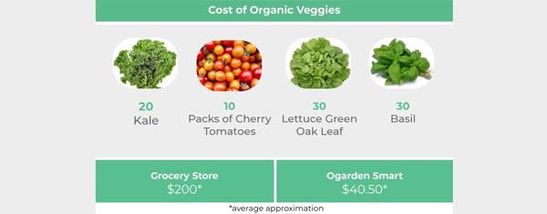 ogarden-organic-veggies