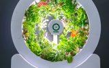 ogarden-smart-gardening-design