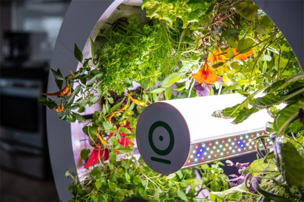 ogarden-smart-gardening-saving-watts