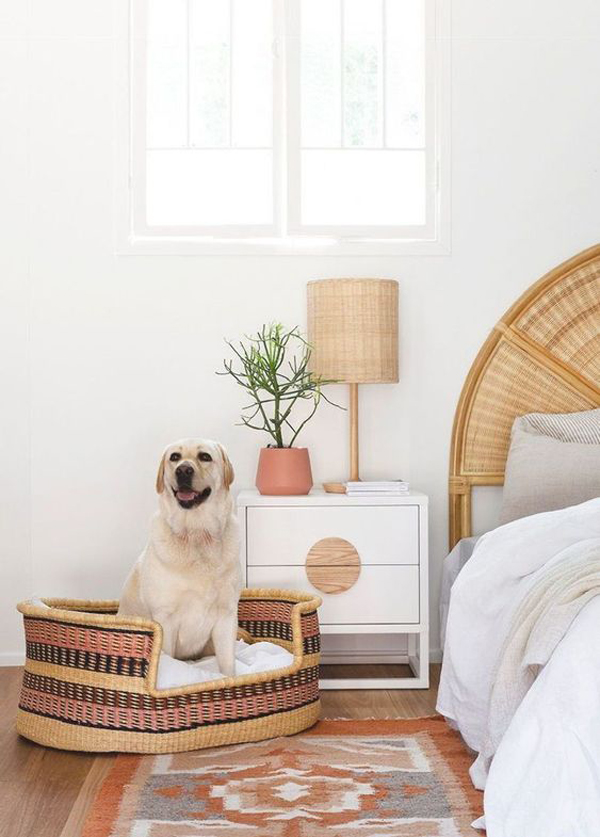 rattan-dog-bed-design