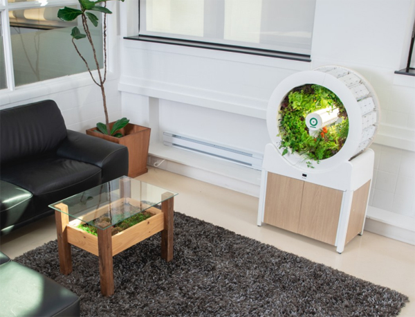 smart-indoor-gardening-system-for-every-room