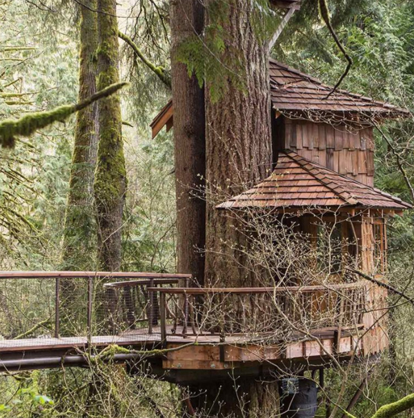 awesome-diy-treehouse-design-in-the-forest