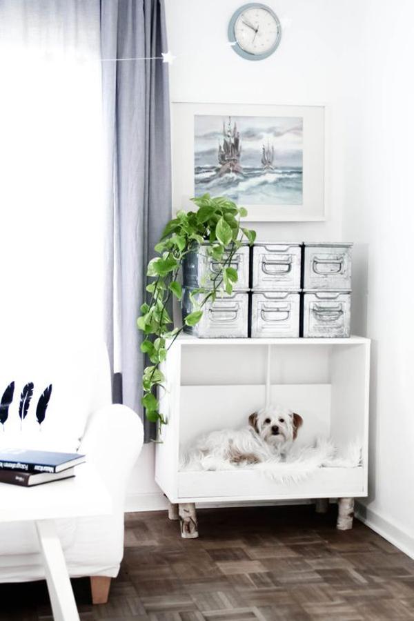 cool-diy-doog-boxes-furniture