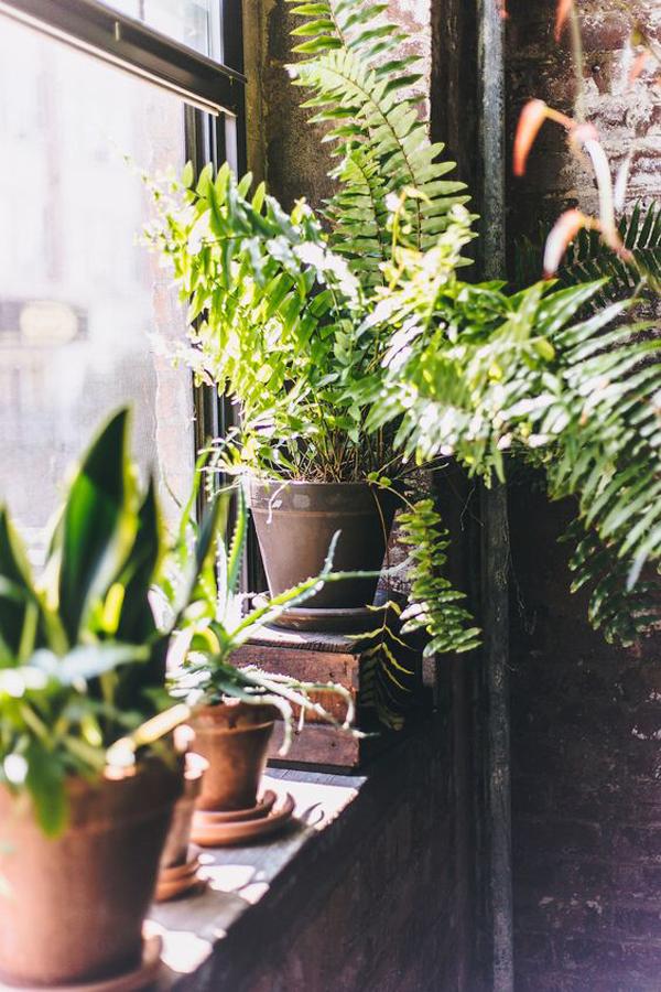 cool-indoor-window-garden-ideas-with-brick-exposed