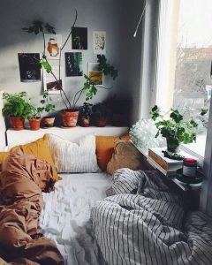 coziest-tiny-bedroom-with-plant-headboard