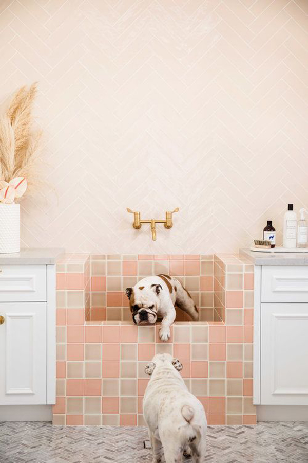 cute-dog-washing-station-design