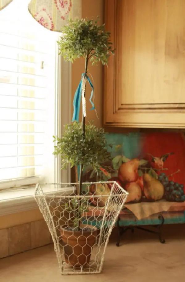 diy-chicken-wire-basket-plant