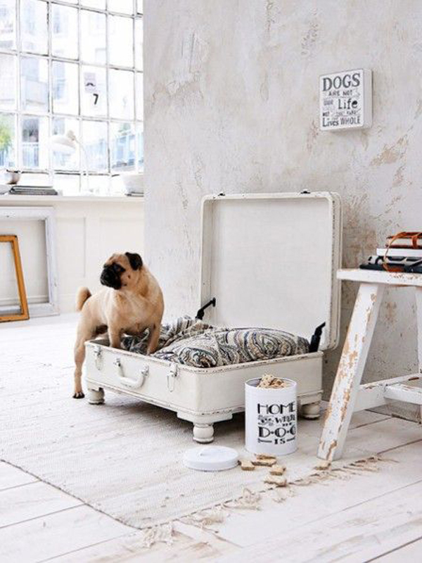 diy-dog-bed-made-from-old-suitcase