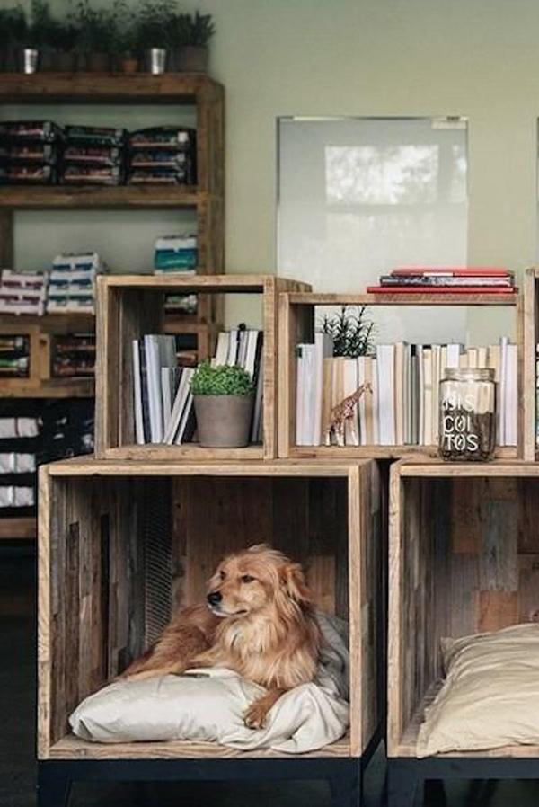 diy-dog-furniture-made-from-pallet