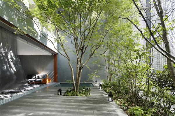 glass-optical-house-landscapes