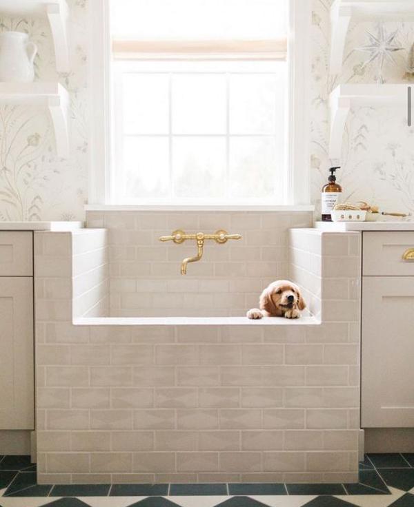 gorgeous-dog-washing-station-ideas