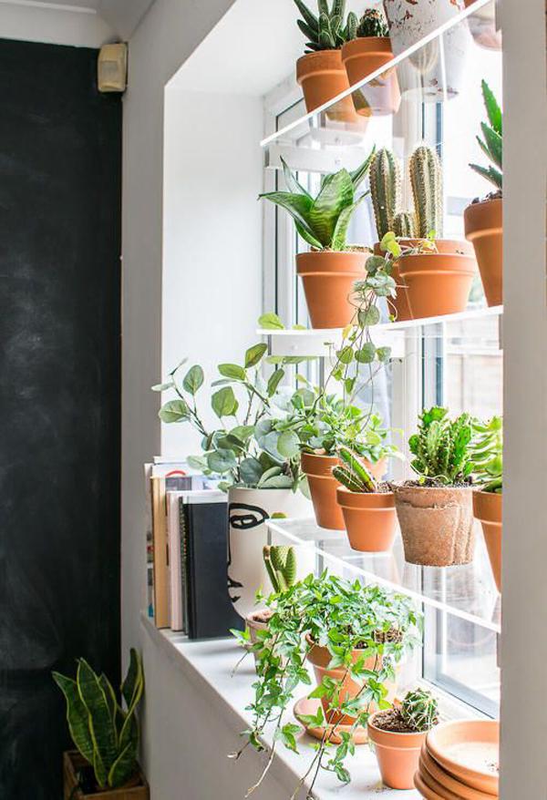 indoor-window-garden-with-glass-rack