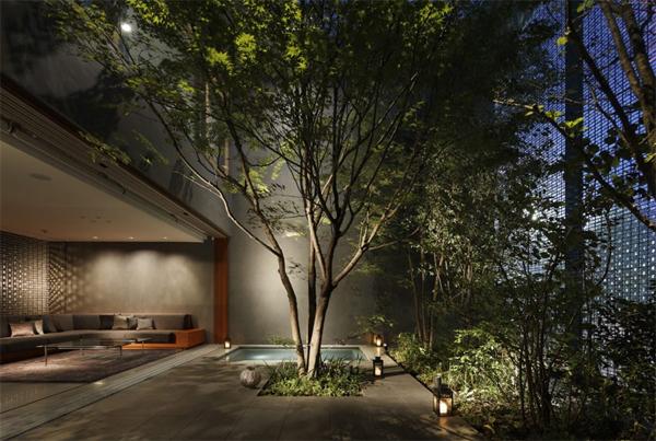 modern-backyard-landscapes