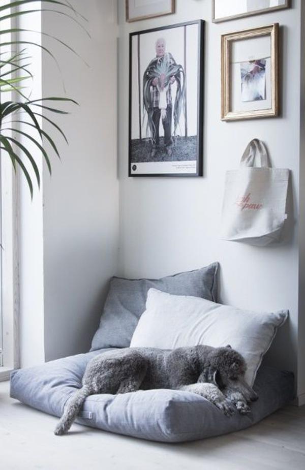 modern-dog-daybed-interior