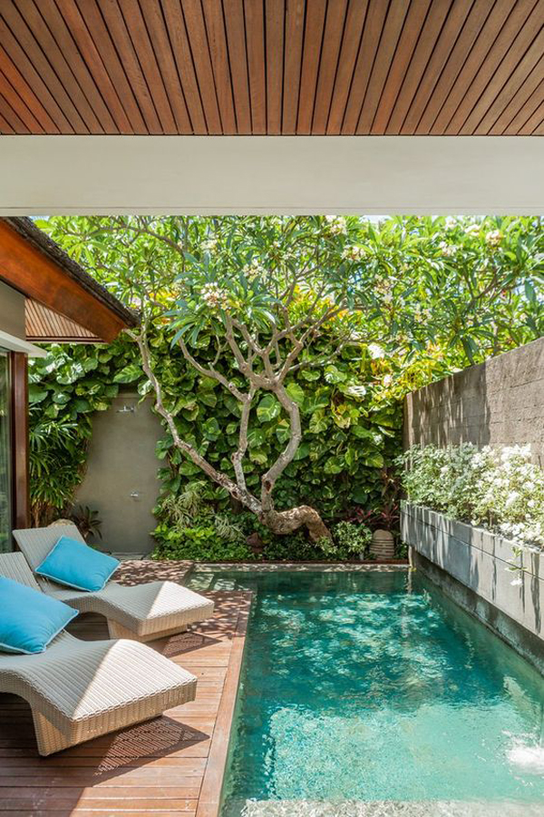 nature-small-pool-design-with-balinese-style