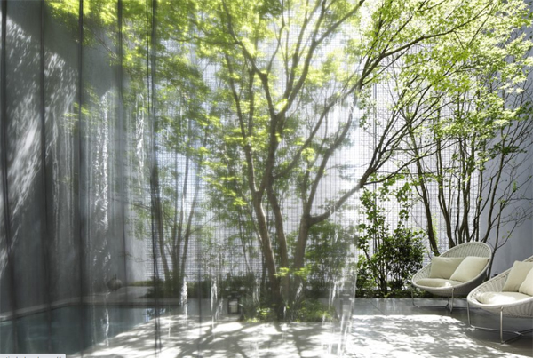 open-glass-optical-house-with-transparat-curtains