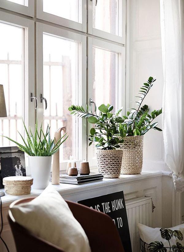 scandinavian-interior-with-windowsill-plants