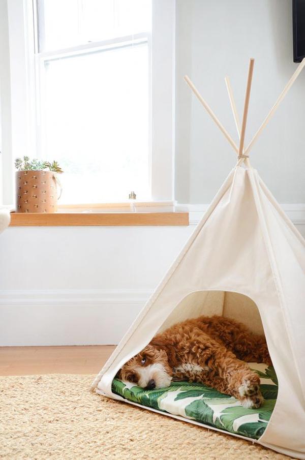 simple-diy-dog-tent-interior-designs