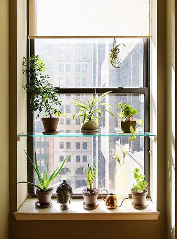 simple-diy-glass-window-plant-racks