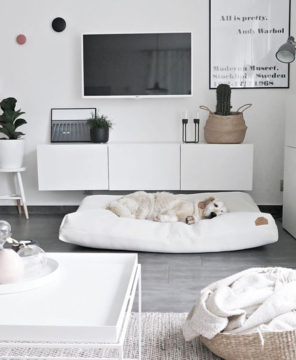 27 Modern Dog-Friendly Interiors That Must Have