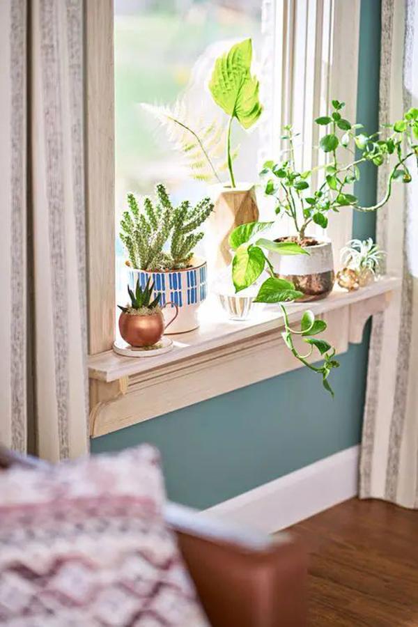 windowsill-ideas-with-plants