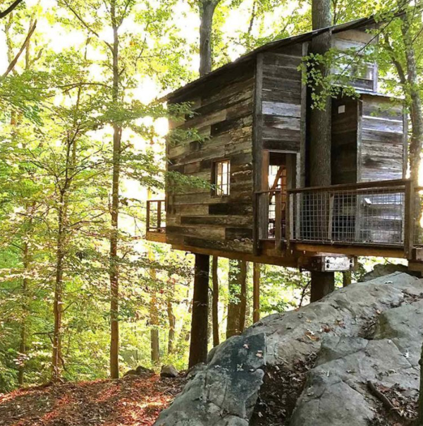 wood-nature-treehouse-design
