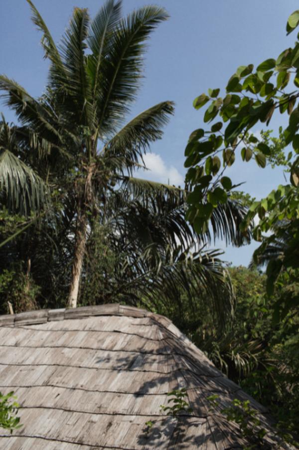 bali-roof-house-design