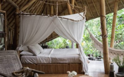 bamboo-house-with-bohemian-vibes