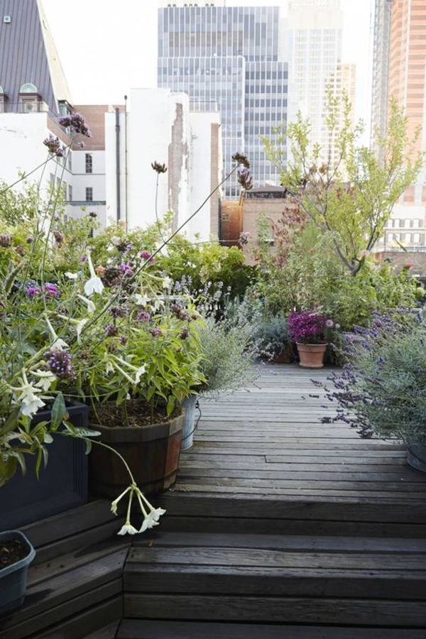 beautiful-lush-floral-garden-for-urban-roof