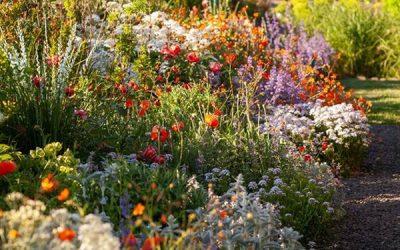 charming-cottage-garden-ideas