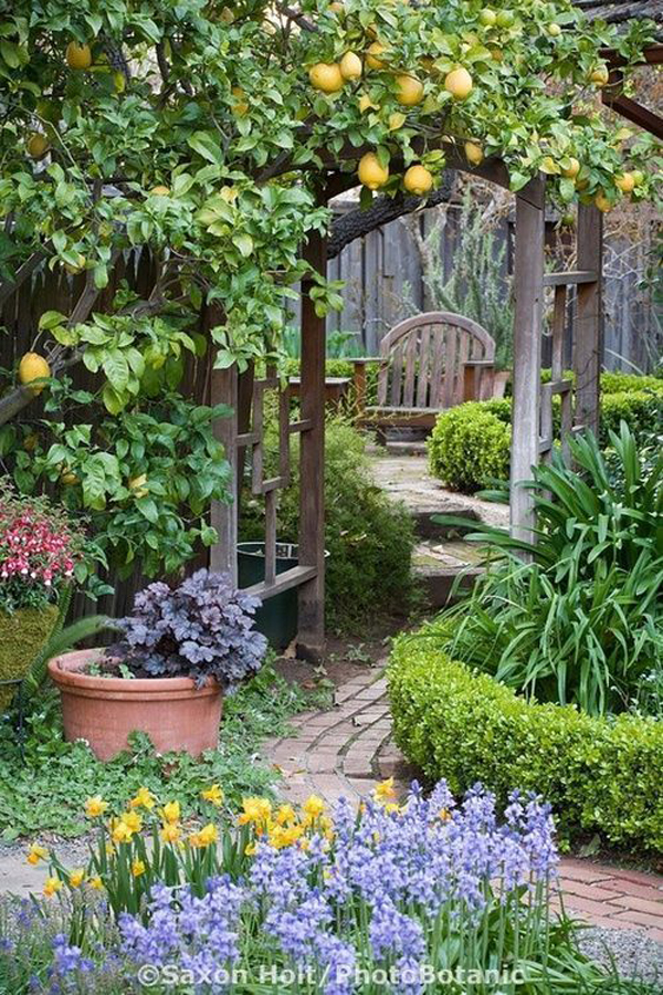 cottage-garden-gate-with-lounge-area