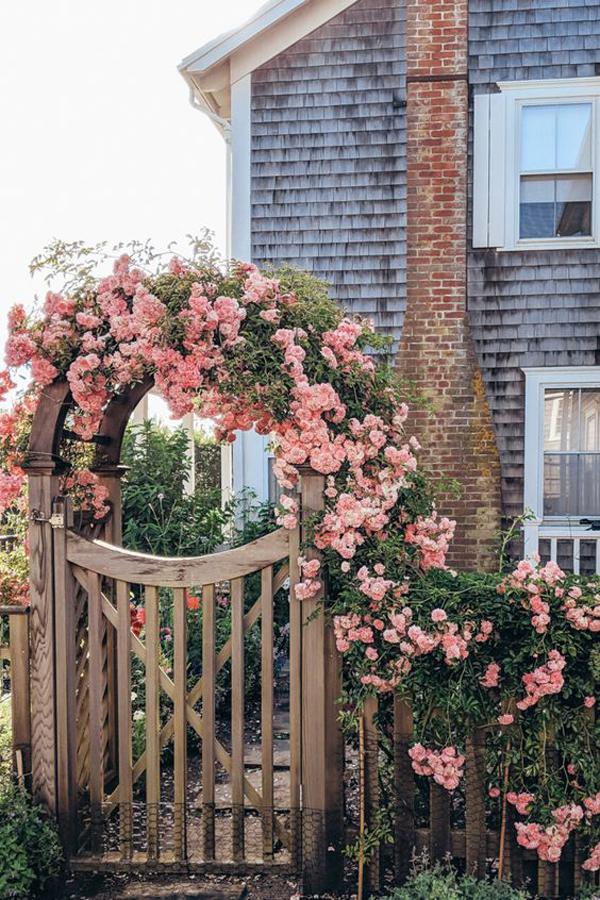 cottage-garden-gate-with-rose-vine