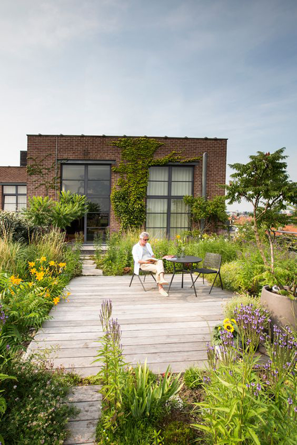 cozy-rooftop-urban-gardens