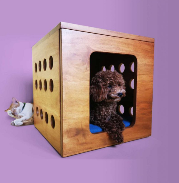 cube-dog-house-design