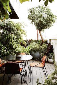 lush-rooftop-garden-design