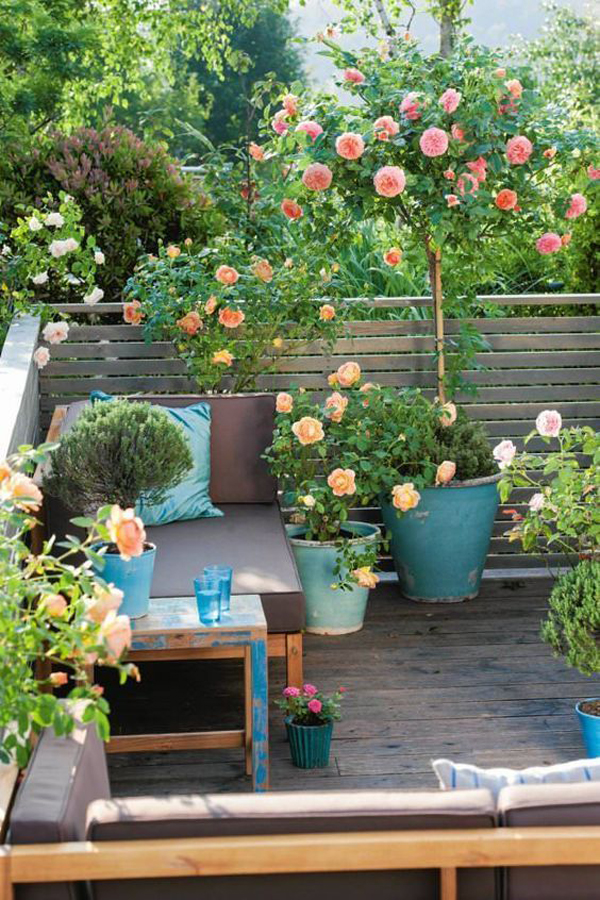 small-floral-rooftop-garden-with-retreat