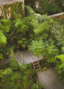 urban-roof-deck-garden-with-jungle-style